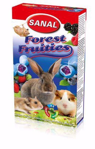 Sanal Forest Fruities 50 gr.