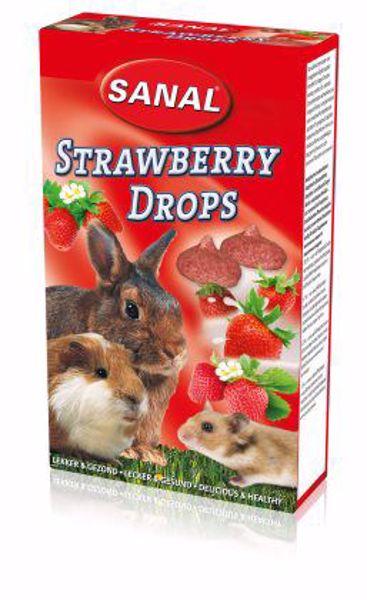 Sanal Strawberry Drops 45 gr.